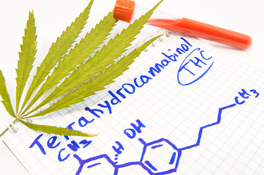 How Long Does THC Stay in Your System? | Midwood Addiction Treatment